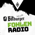 Fohlenradio