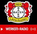 WERKS11-Radio