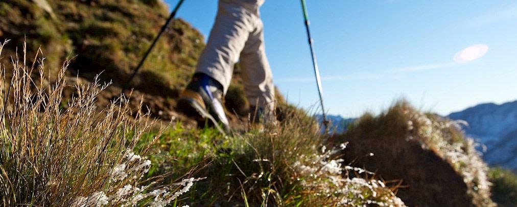 Tipps, Tricks, Training, Gehen, Wegloses Gelände