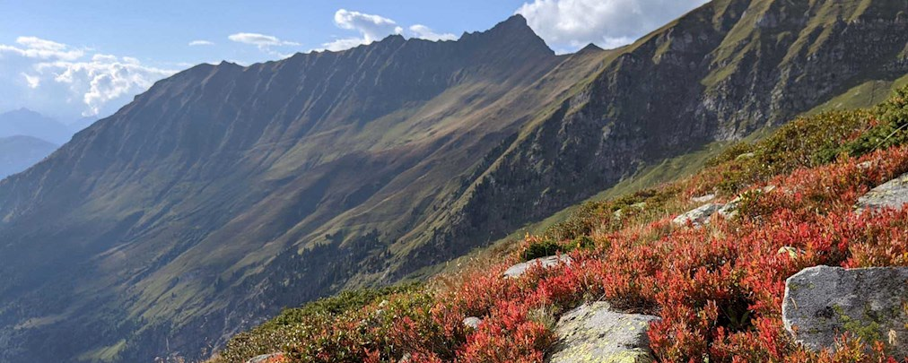 DAV Bergbericht: So sind die Tourenbedingungen am Wochenende