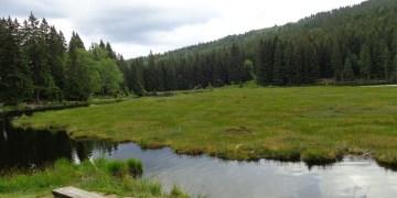 Wanderung: Von Bodenmais auf den Kleinen Arber