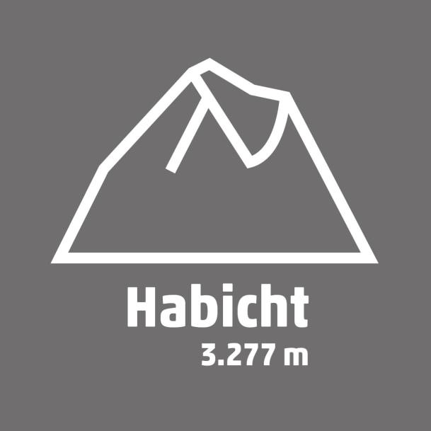 Piktogramm_Habicht
