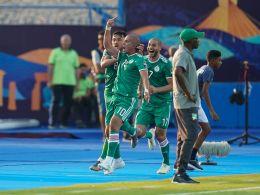 Algerien bejubelt den Führungstreffer - und später den Einzug ins Halbfinale des Afrika-Cups.