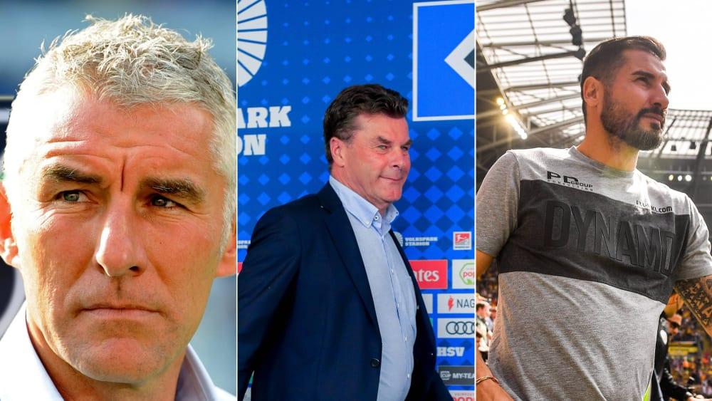 Mirko Slomka, Dieter Hecking und Christian Fiel