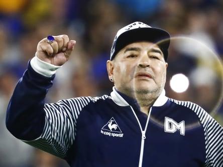 """""""Mitreißen kann er, zumindest anfangs"""": Diego Armando Maradona, hier im März 2020 als Trainer von Gimnasia La Plata."""