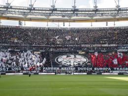 Geldstrafen für Frankfurt, Mainz und Hoffenheim