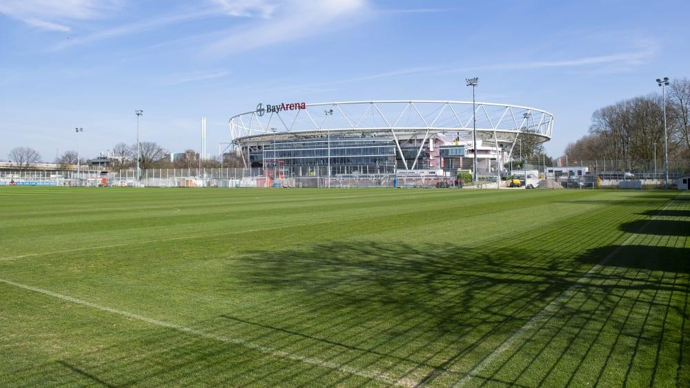 Training und Gehaltsverzicht - in Leverkusen besteht Klärungsbedarf