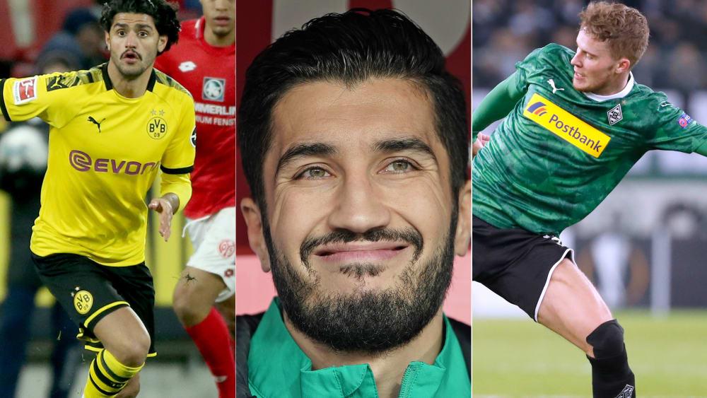 Dahoud, Nuri, Elvedi