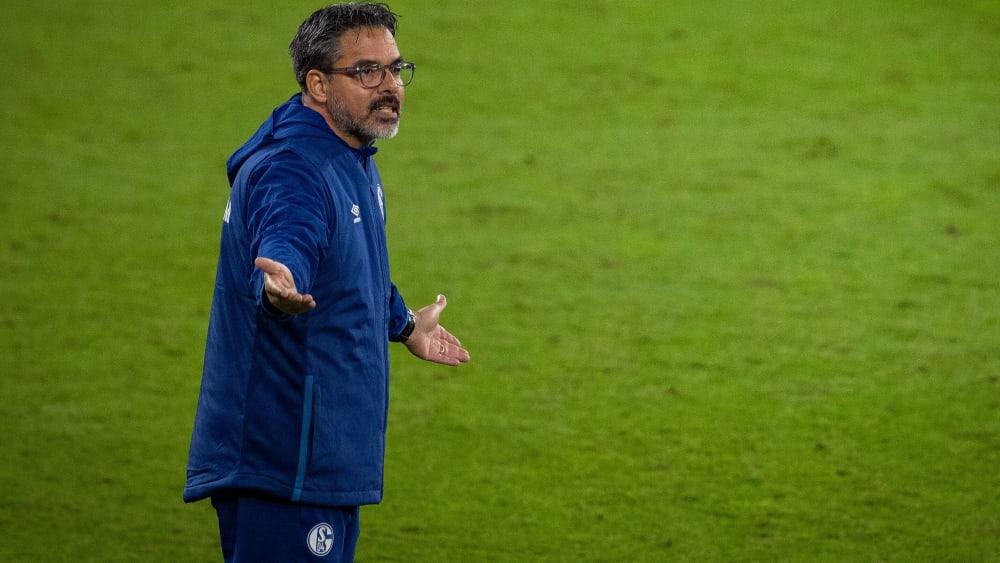 Schalke trennt sich von Wagner