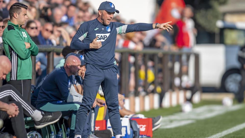 Hoffenheims Trainer Alfred Schreuder.