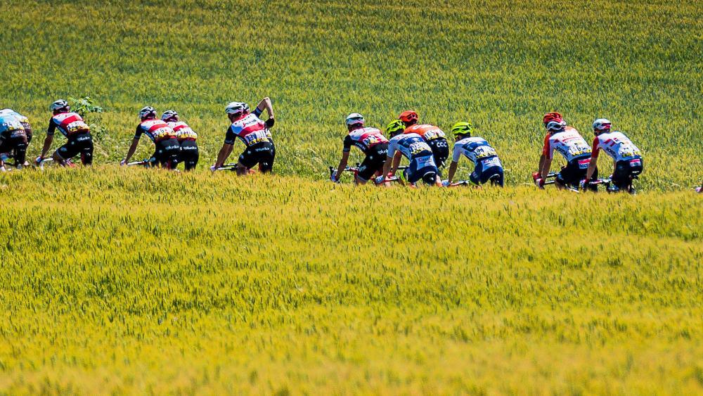 Die 106. Tour de France ist in vollem Gange. Die Bilder zur Tour...